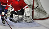Goalie butterfly 84 — Stock Photo