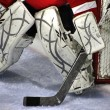 Stock Photo: Goalie pads 52