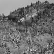Stock Photo: B & W Hillside 5344