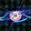 Fractal vision background - Stock Photo