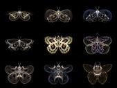 Visualization of Fractal Butterflies — 图库照片