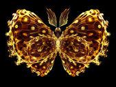 Pétalos de mariposa — Foto de Stock