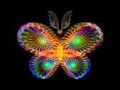 Vivid Butterfly — Stock Photo