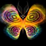 Beautiful Butterfly — Stock Photo #38272621
