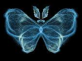 Butterfly Elegance — 图库照片