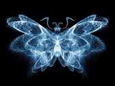 Cool Butterfly — Stock Photo