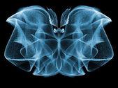 Butterfly Elegance — Stock Photo