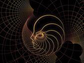 Dusza geometrii propagacji — Zdjęcie stockowe