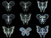 Diversity of Fractal Butterflies — Stock Photo