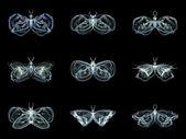 Virtual Fractal Butterflies — Stock Photo