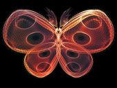 Glow of Butterfly — Stockfoto