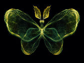 Magic of Butterfly — Stockfoto
