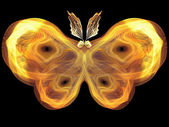 Butterfly Abstraction — Stockfoto