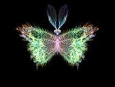 Elegancia de mariposa — Foto de Stock