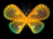 Vivid Butterfly — Stock Photo