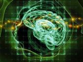 Evolving Mind — Stok fotoğraf