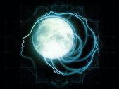 Lunar Zodiac — Stock Photo