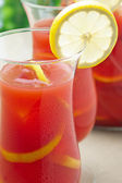Chilled Orange Lemon Sangria — Stock Photo