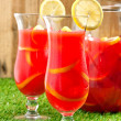 Chilled Orange Lemon Sangria — Stock Photo #12672887