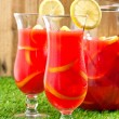 Stock Photo: Chilled Orange Lemon Sangria