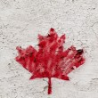 Single painted red maple leave — Foto Stock