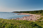 Green Cove, Cape Breton Island — Foto Stock