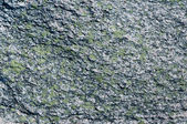Granite with green moos — Stock Photo
