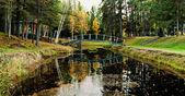 Bridge over river in autumn — Stock Photo