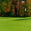 Golf course putting green — Stock Photo