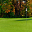 Stock Photo: Golf course putting green