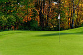 Golf course putting green — Stockfoto