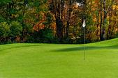 Golfbaan putting green — Stockfoto