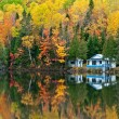 Forest and house Reflections — Stock Photo