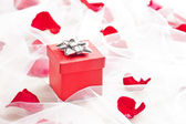 Red Gift box with silver bow on wedding veil — Stock Photo