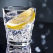 Gin Tonic or Tom Collins — Stock Photo #24198731