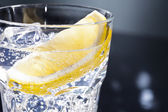 Gin Tonic or Tom Collins — Stock Photo