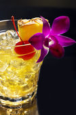 Mai Tai — Stock Photo