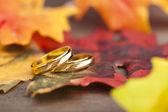 Wedding Engagement ring — Stock Photo
