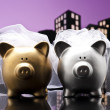 Metropolis City lesbian piggy bank civil union — Stock Photo
