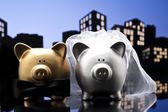 Metropolis City pig wedding the piggy bank with veil and bow tie — Stock Photo