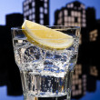 Metropolis Gin Tonic cocktail — Stock Photo