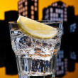 Metropolis Gin Tonic cocktail — Stock Photo #31381733