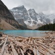 Stock Photo: Lake moraine