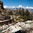 Stock Photo: Entrance to SantCruz Trek, Peru,
