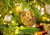 Ornament in a real Christmas tree — Stock Photo