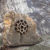 Stone musical speaker — Stock Photo
