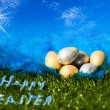 Stock Photo: Easter eggs on grass and plumelet