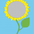 Sunflower on a blue background — Stock Vector
