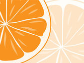 Background of orange slices. — Stock Vector