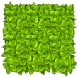 Royalty-Free Stock Vektorfiler: Background of green leaves